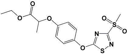Artikel ST05328, CAS 1000573-04-5